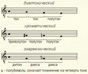 Tetrachorda
